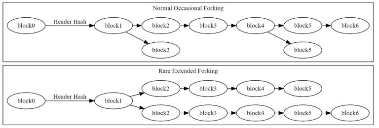 Визуализация редко случающегося расширенного ветвления блокчейна